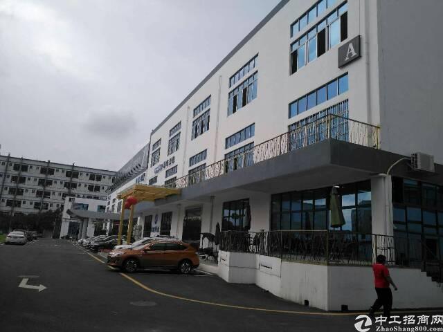 坪山碧岭标准一楼高度4.5米带装修办公室890平米出租