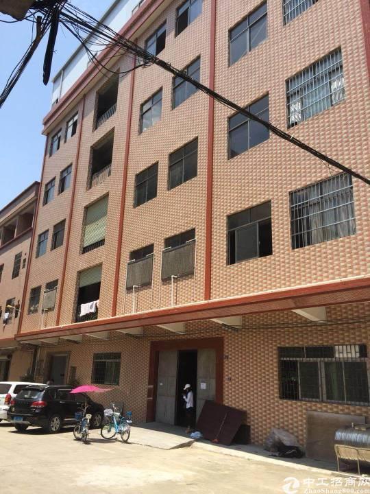 茶山镇南社一楼厂房约300,电20,八成新高3.5米