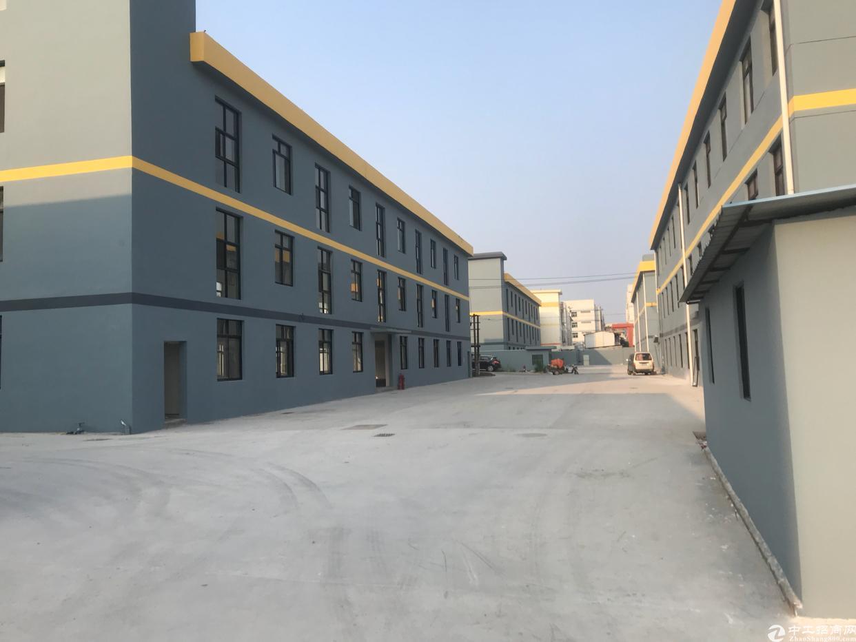 横岗新出独栋厂房出租2300平方米-图4