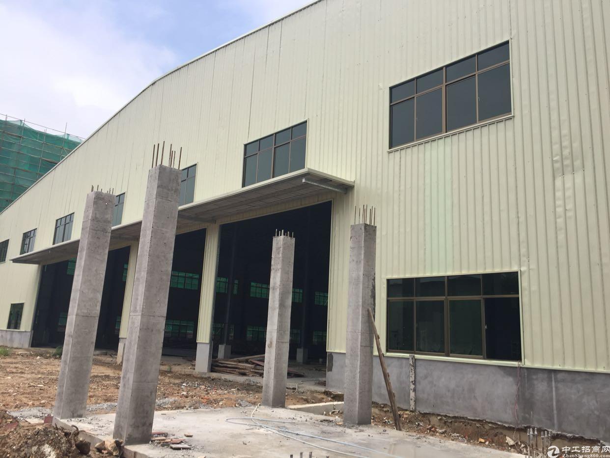 茶山新建单一层钢构厂房出租