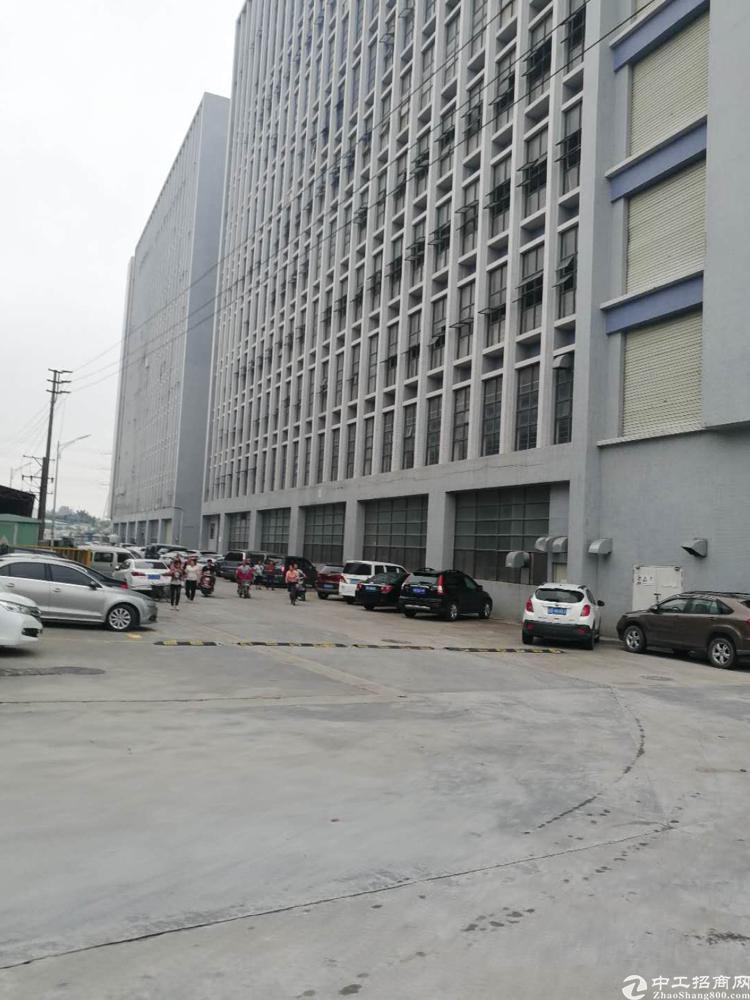 公明南光高速出口大型园区一楼二各2400平米招租