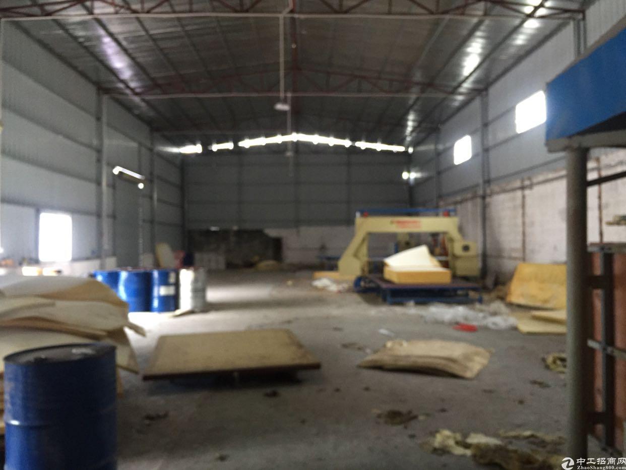横沥新出铁皮房,位置超好,可做噪音污染行业