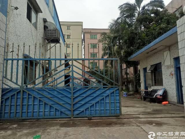 虎门新出厂房5000平方,独门独院,厂房位于虎门高速口附近