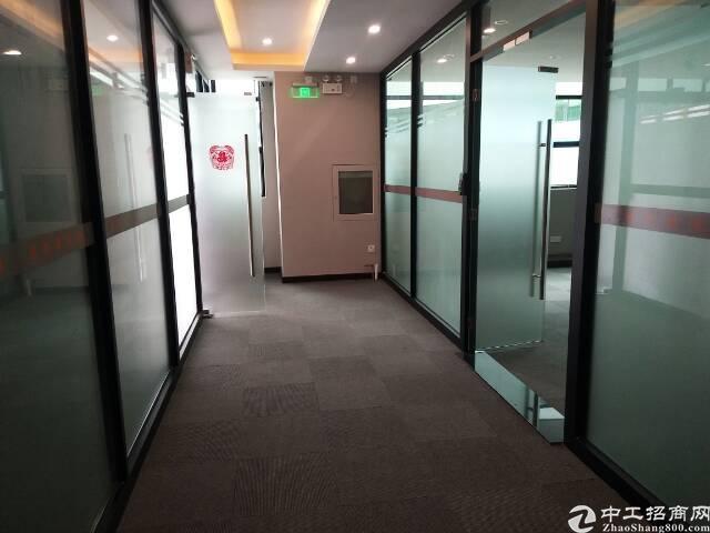 西丽大学城1楼精装办公室出租