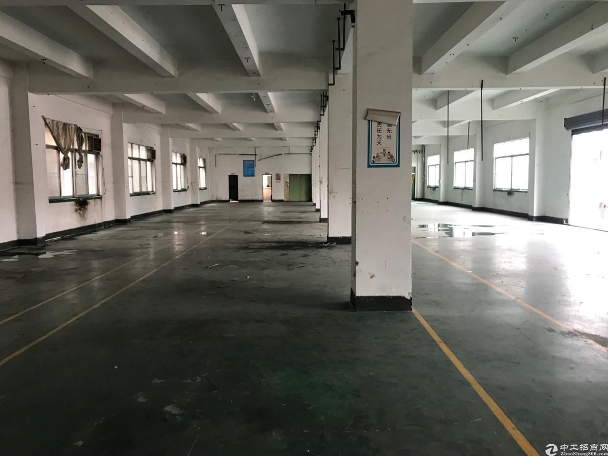 横岗安良社区,新出独栋厂房,5300平方米-图3