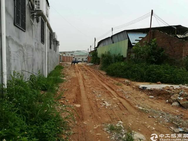 横沥镇新出原房东铁皮房500平方米