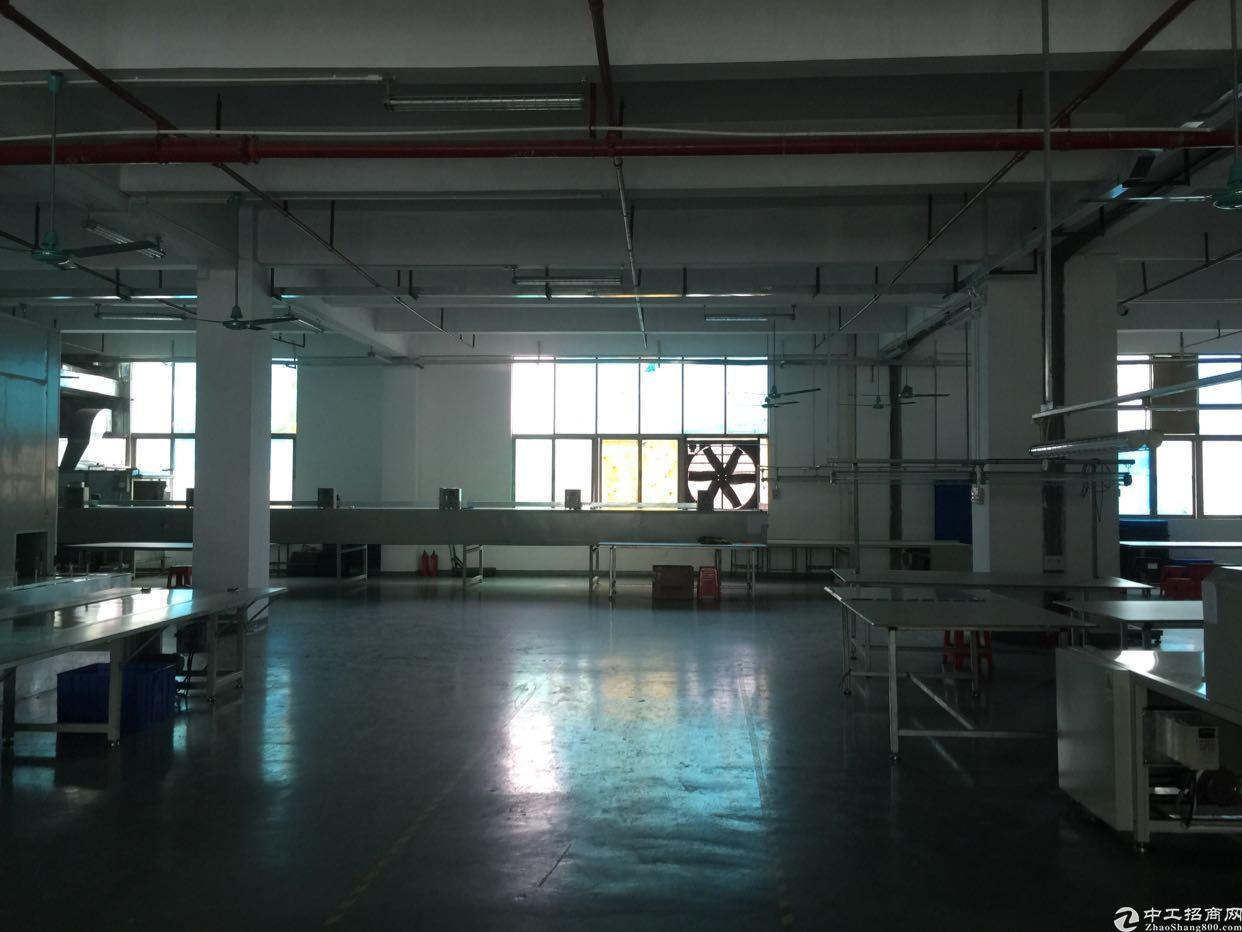 福永桥头地铁站附近楼上800平带装修招租-图4
