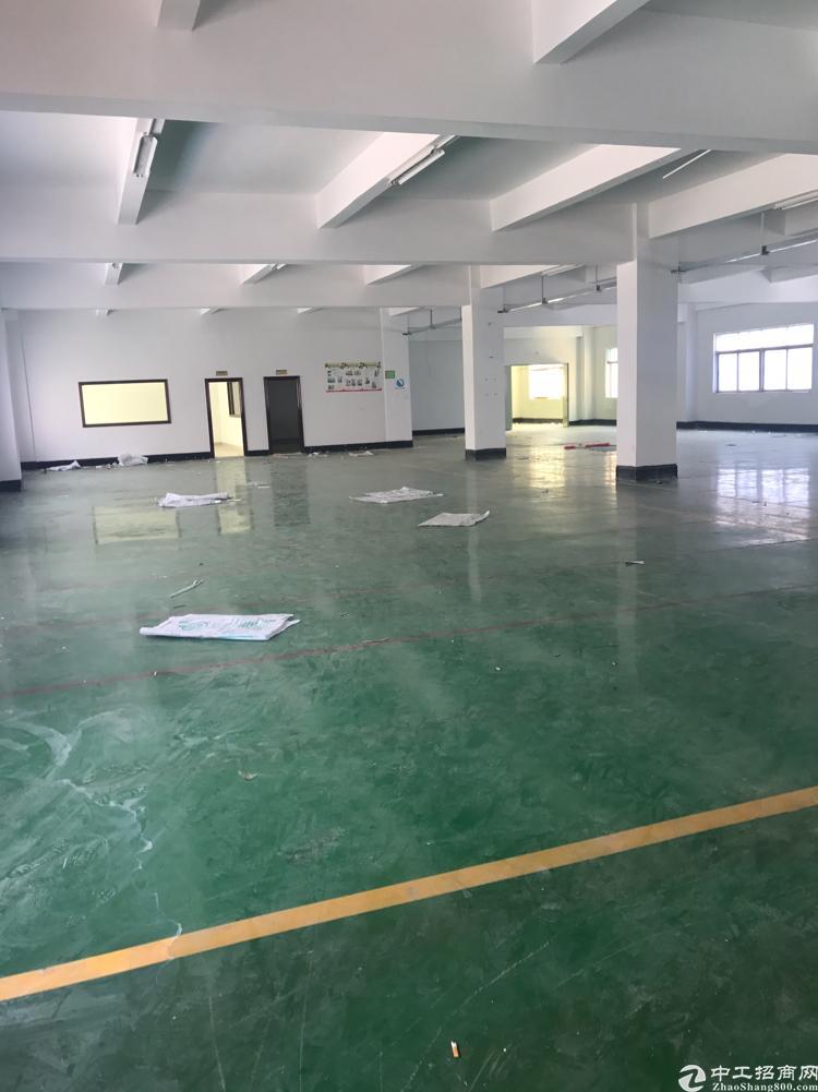 横岗新出独院厂房面积9210平带装修可分租-图2