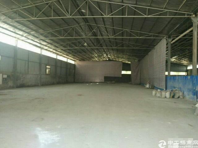 现有钢结构单一层厂房4200平方米出租,水滴9米