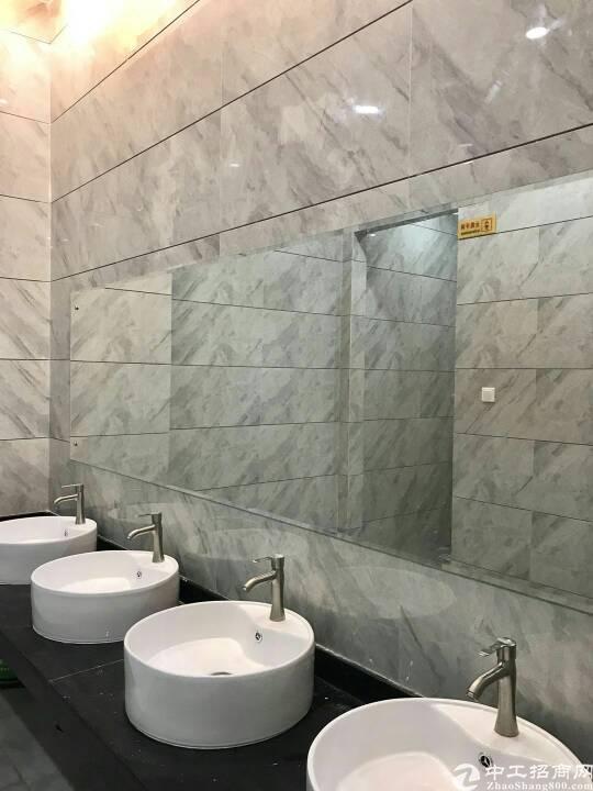 沙井中心路精装修标准写字楼