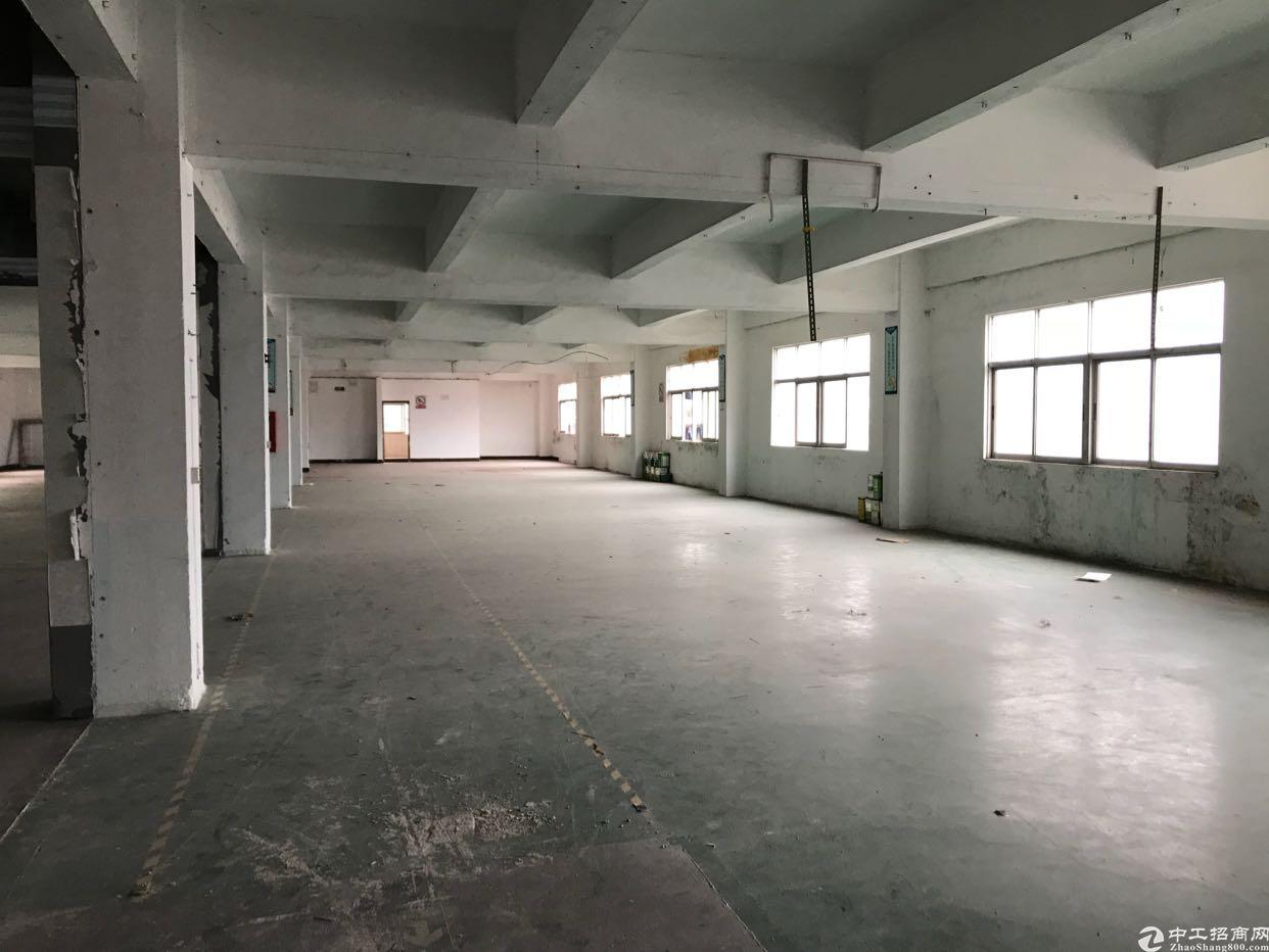 横岗新出独栋厂房出租2300平方米-图2
