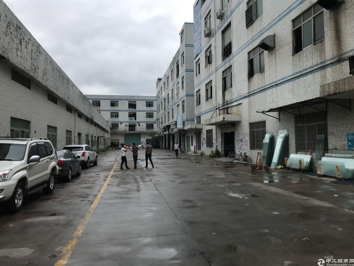 横岗安良社区,新出独栋厂房,5300平方米