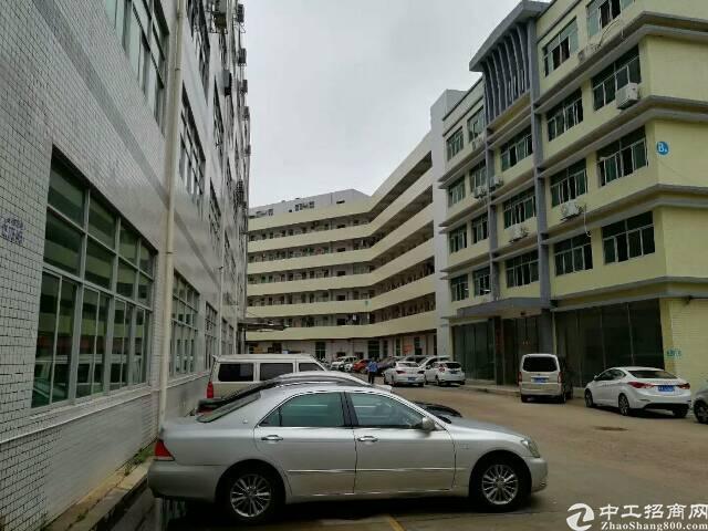 横岗一楼精装修厂房,现成办公室 地坪漆 消费喷淋,面积720