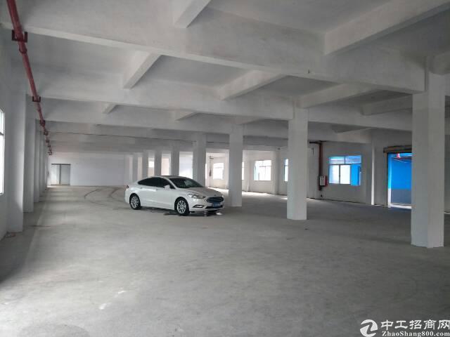 茶山镇全新厂房分租一楼1000平方米