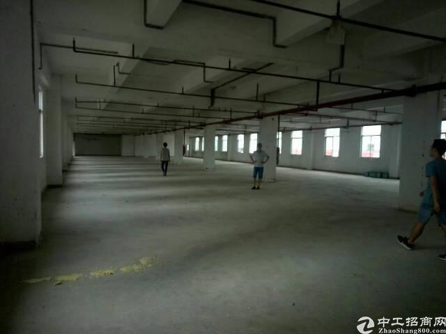 谢岗南面村带空中花园楼上两千平米!适合,电商,仓库,电子