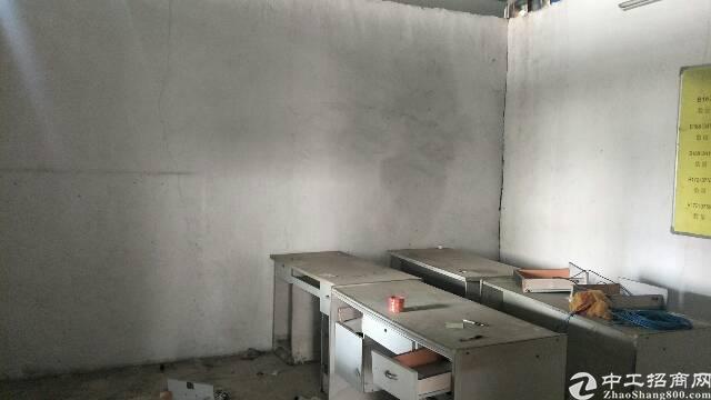 公明新陂头新出钢构厂房2000-图2