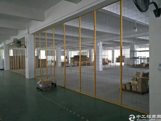 横岗 大工业区 实量面积1800平带装修水电 低价出租-图3