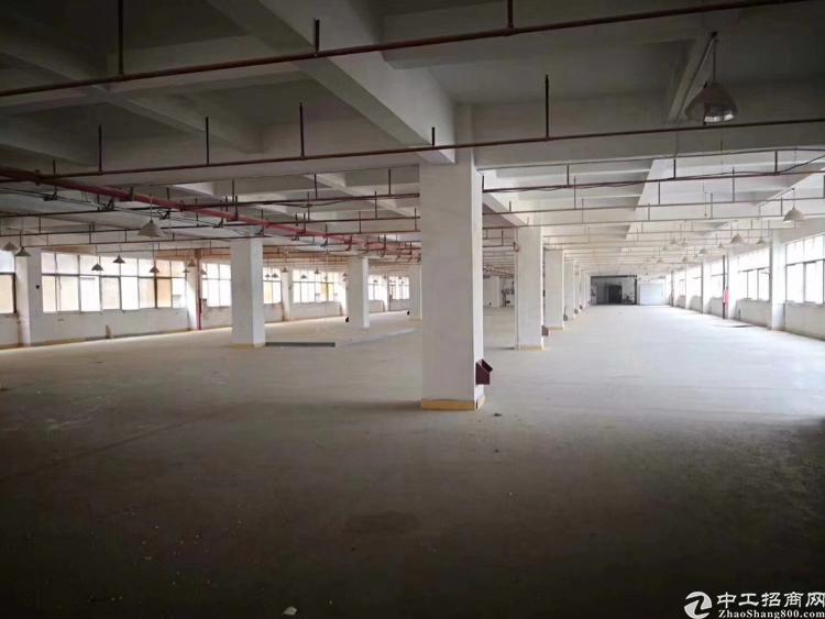惠州市三栋镇新出8400平独门独院标准厂房出租。
