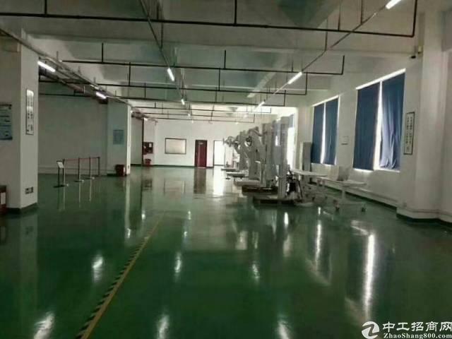 坂田上雪科技园新出两层原房东厂房使用率高1350每层平米