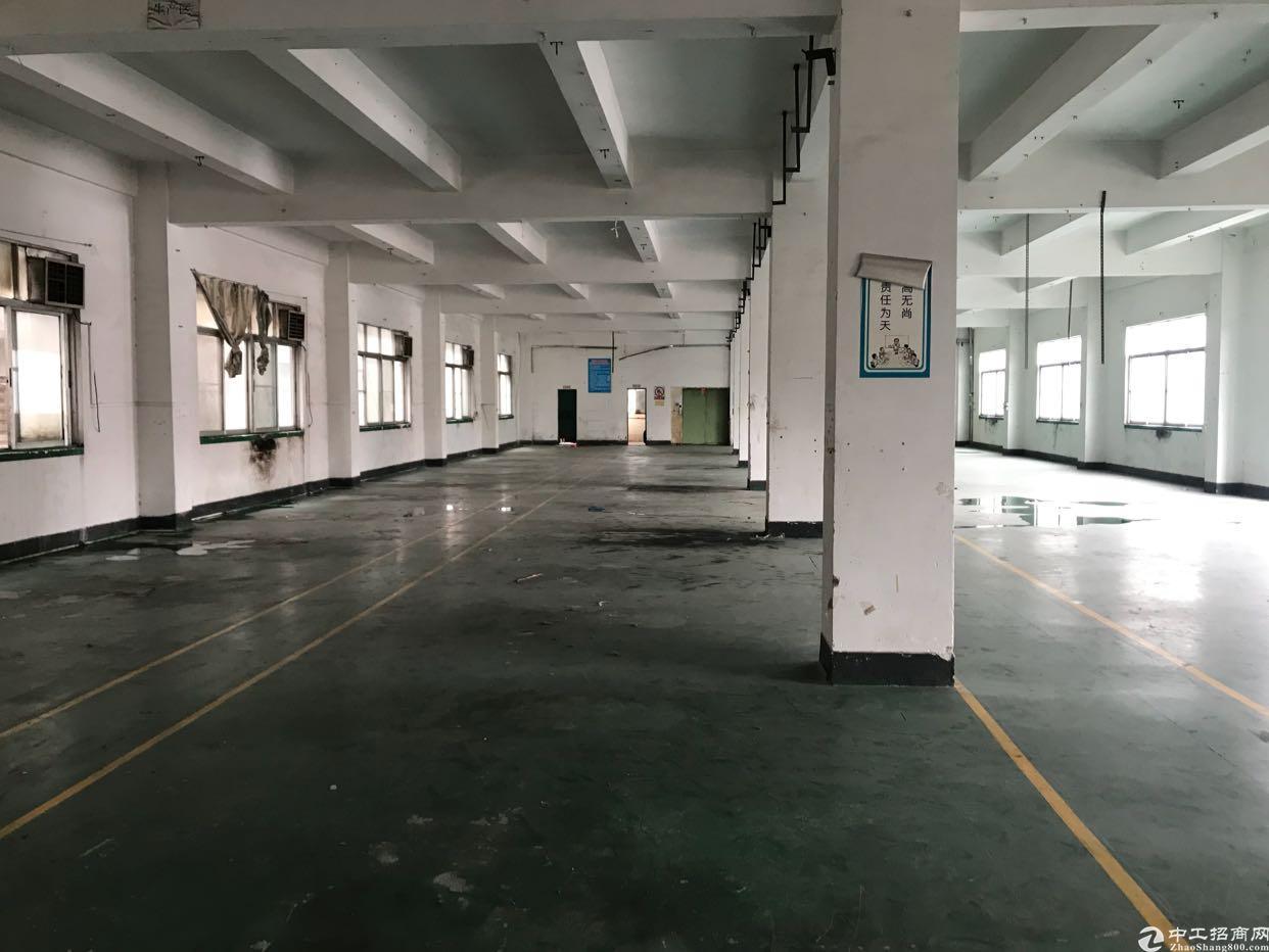 横岗安良社区,新出独栋厂房,5300平方米-图2