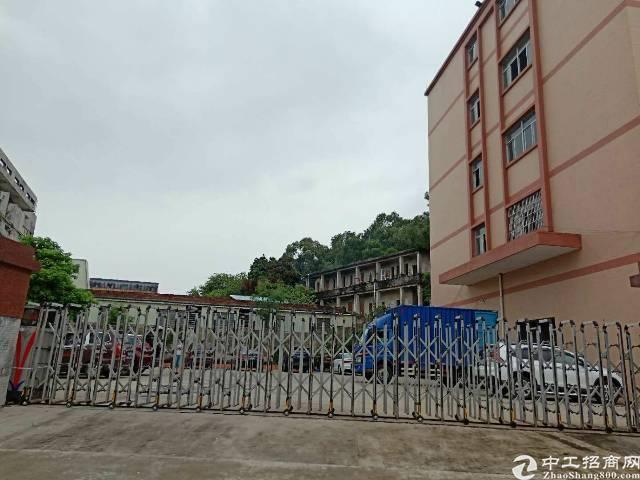 茶山镇原房东精美独门独院厂房出租,总面积8800,可分租