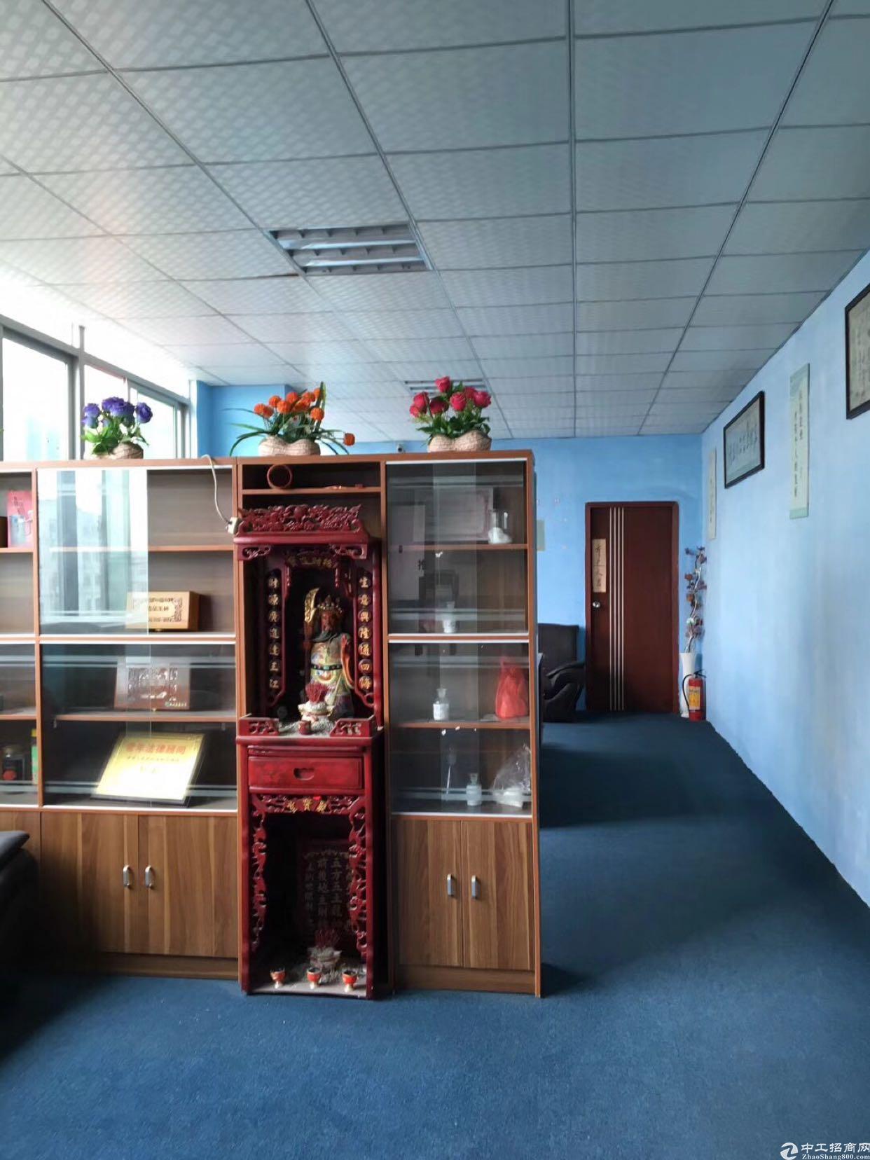 小清新办公室