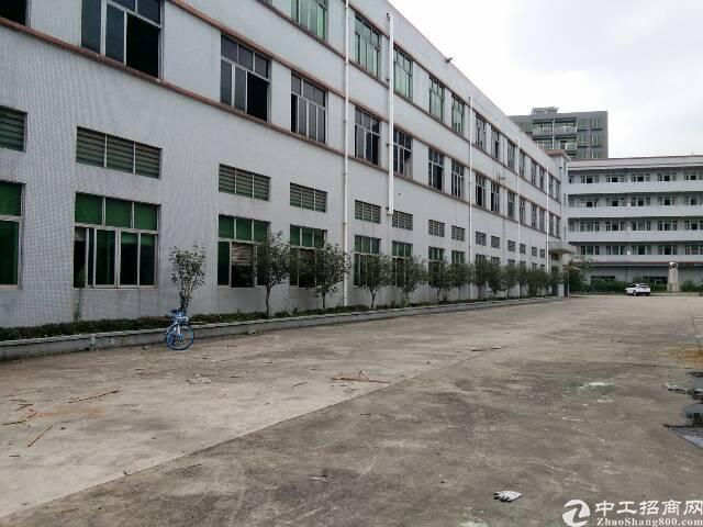 溪头独院厂房8000平米,独立办公楼