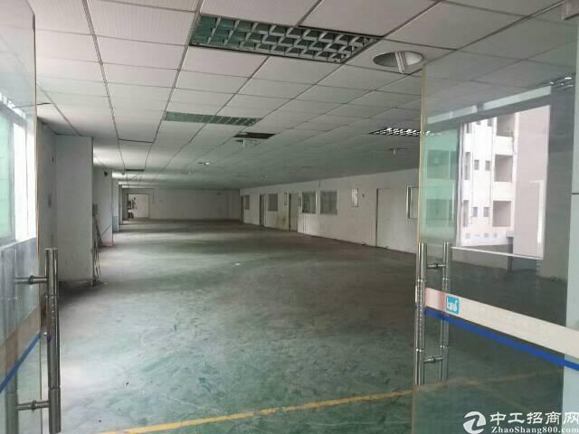 大朗镇新出2楼1000平方标准厂房带无尘车间出租