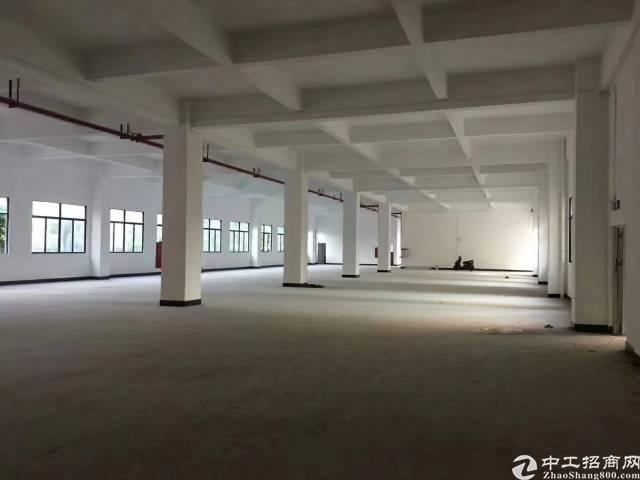 凤岗浸校塘新出全新重工业厂房一楼1300平