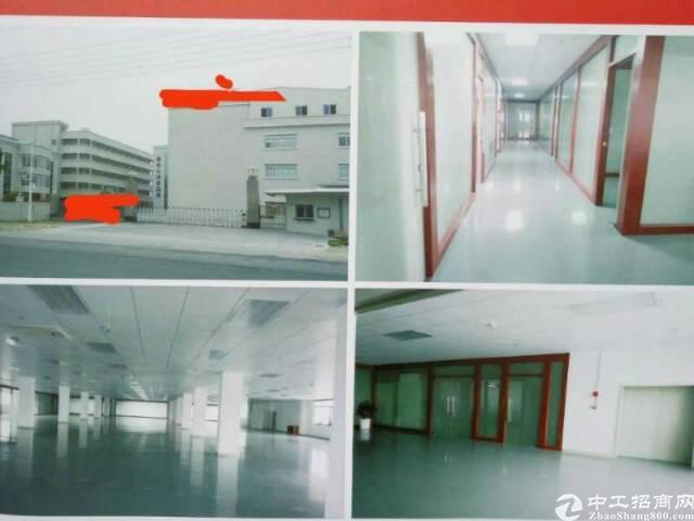 石排新出独院物业厂房+宿舍1-6F,实际面积33000方