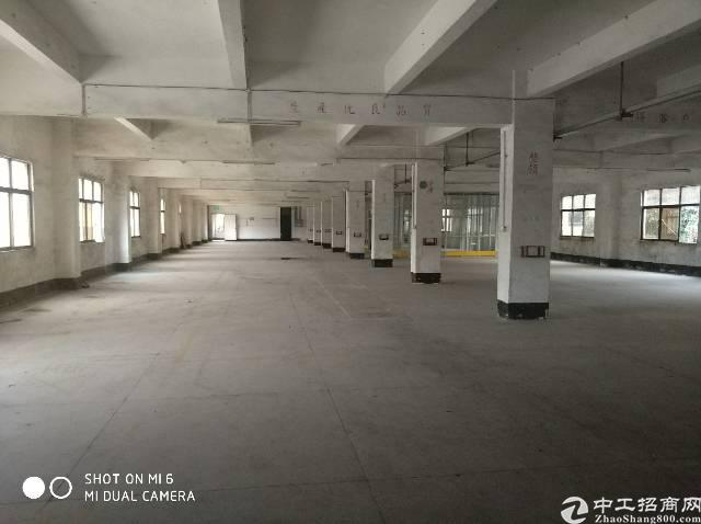 石碣新出二楼厂房900平米,租12块位置好易招工