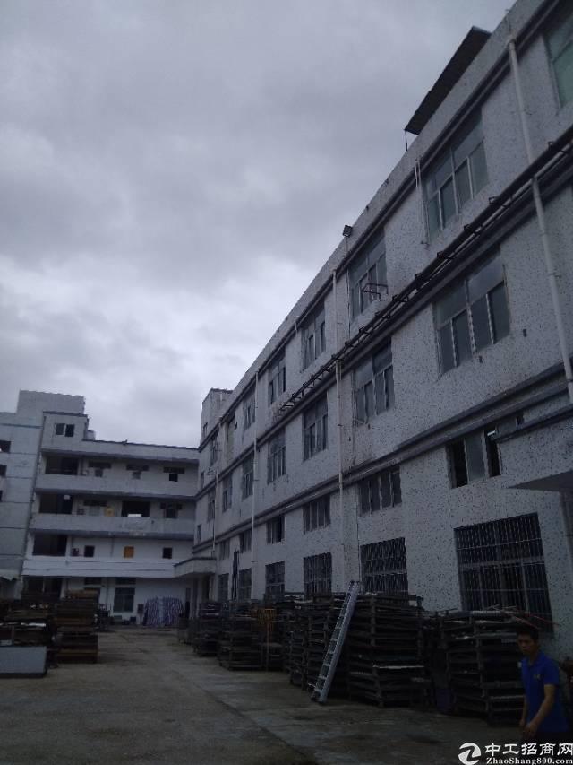 龙岗坪地新出标准一楼600平方高六米