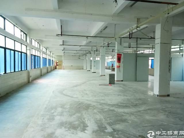 坪山碧岭新出楼上带装修厂房出租1092平米