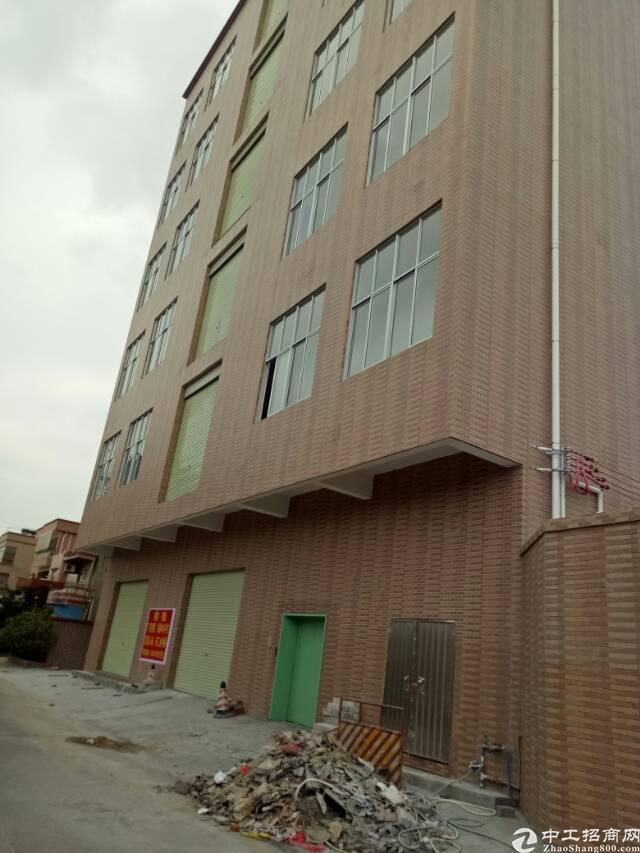 虎门镇新出全新厂房1-6层2500平方,原房东出租,带电梯!