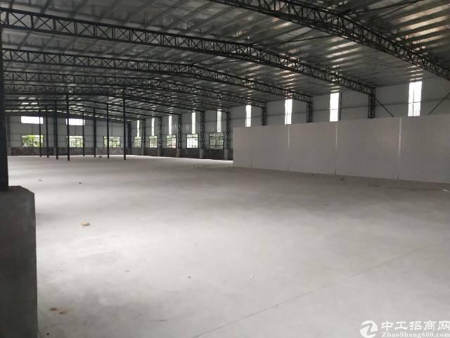 茶山镇独门独院厂房出租