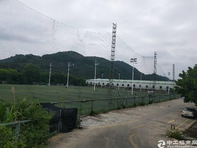 深圳西丽麻磡17000平空地招租