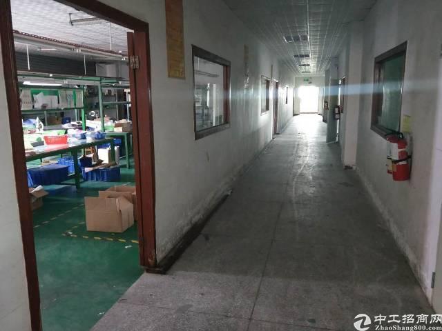 西乡三围独门独院4350平米厂房出租-图4