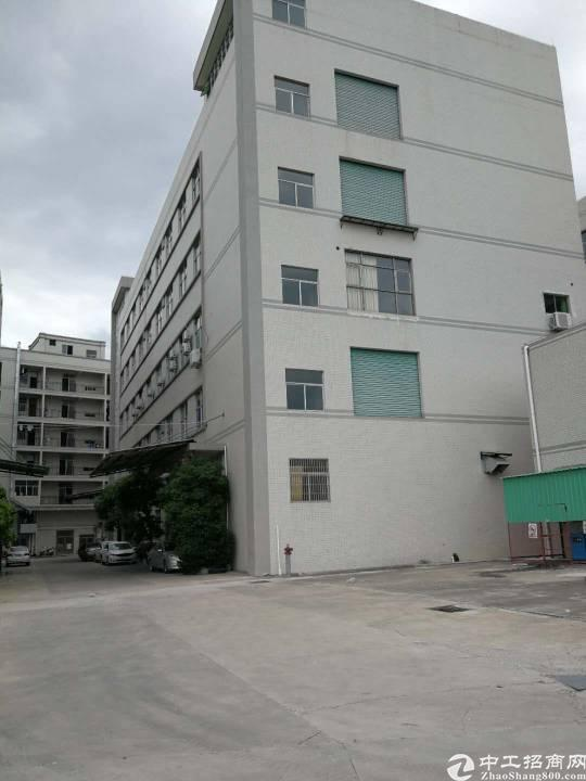 惠州三栋主干道旁独院6000平标准厂房出租