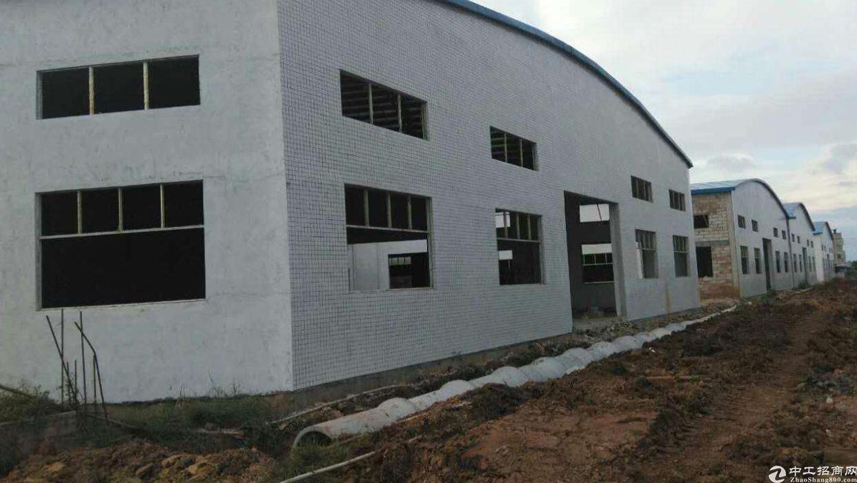 茶山镇新建单一层12万平方钢结构厂房招租
