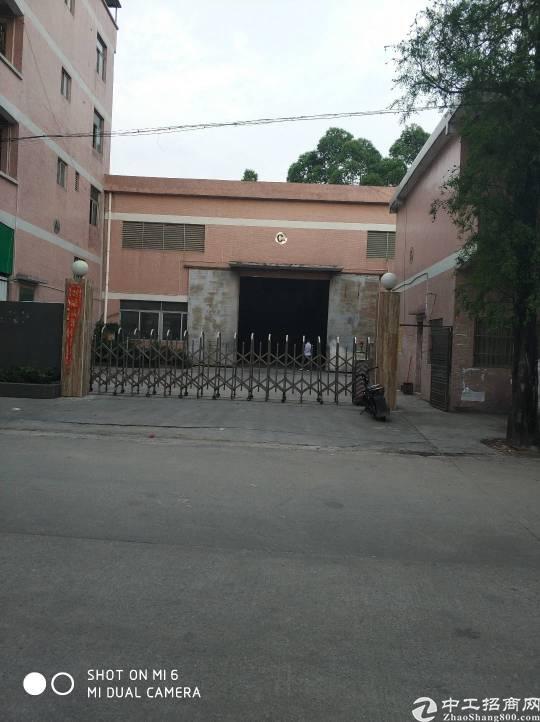 东莞市高埗镇低涌村独院砖墙到顶单一层厂房