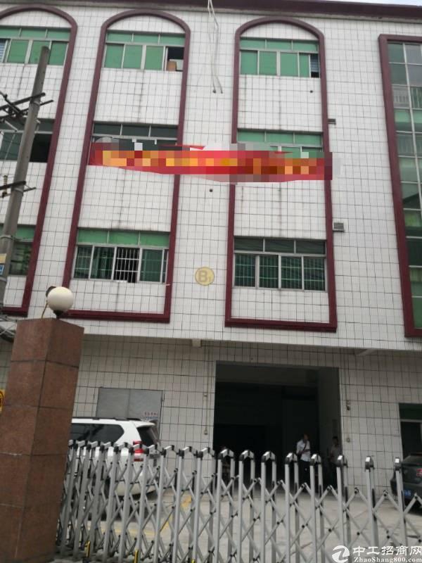 茶山镇三楼原房东1350平方,形象极佳
