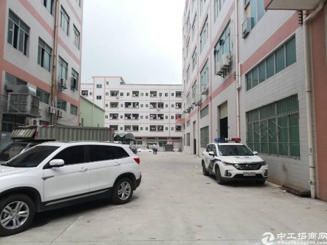 凤岗255省道旁楼上350平米带装修厂房出租