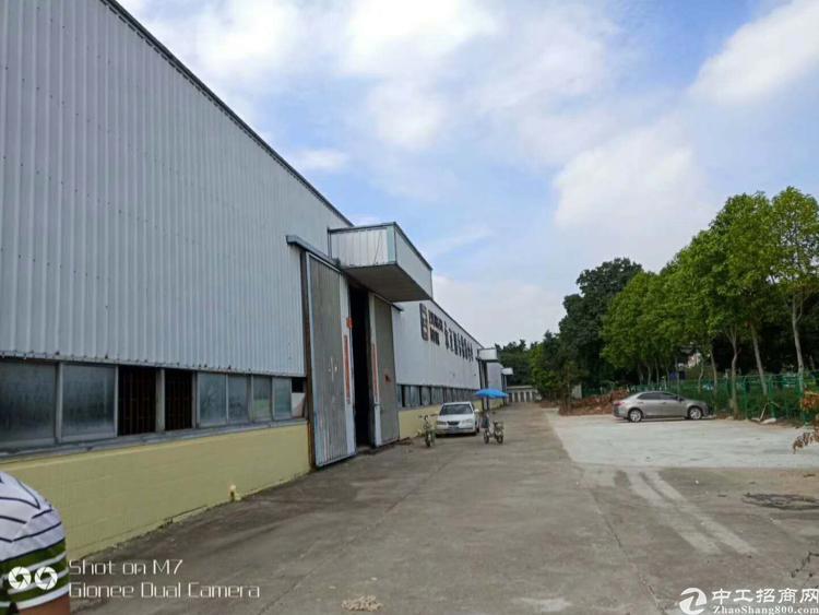 新出道滘高速出口旁超大单一层厂房