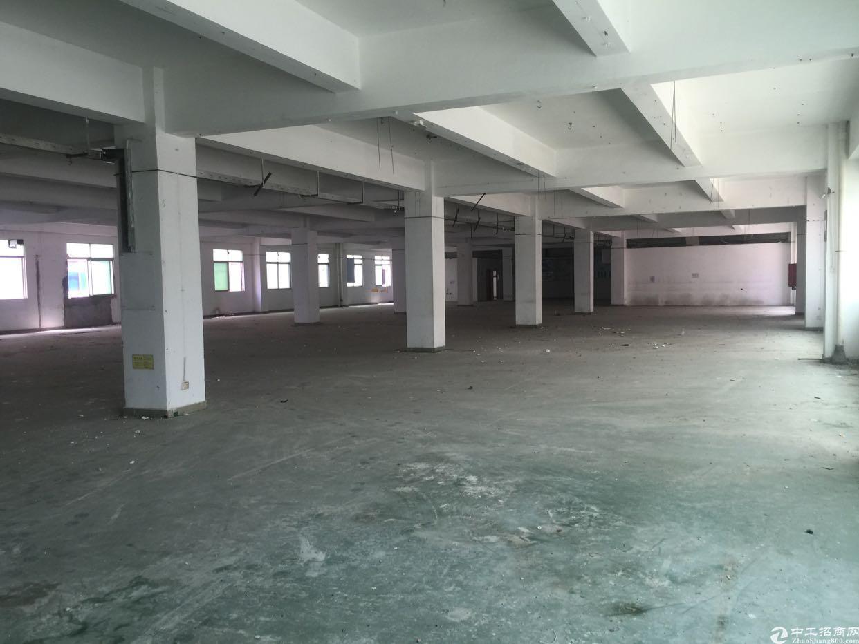 福永和平楼上整层1500带装修招租