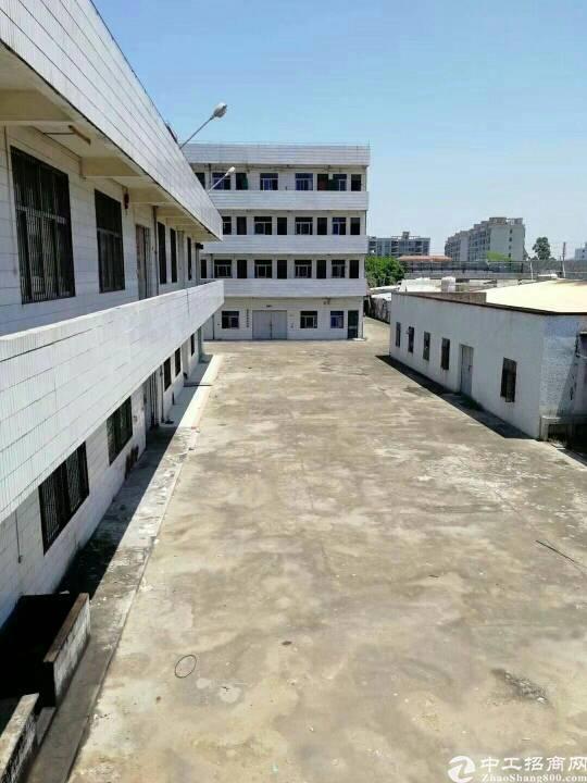 惠东白花标准厂房独院5000平米火爆招租