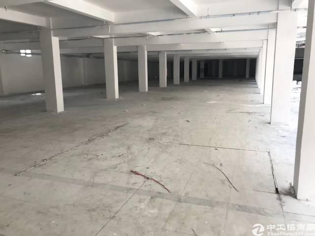 万江环城路边独门独院厂房分租