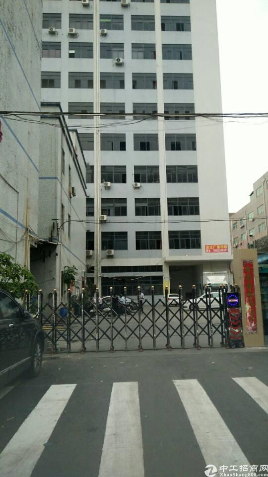 李松朗新出楼上1800带办公室装修厂房