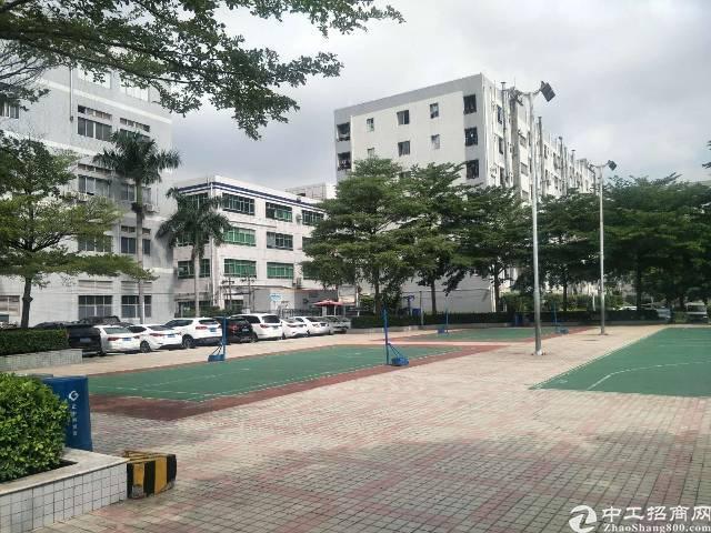 适合电子,贸易办公新和楼上1100平厂房招租米