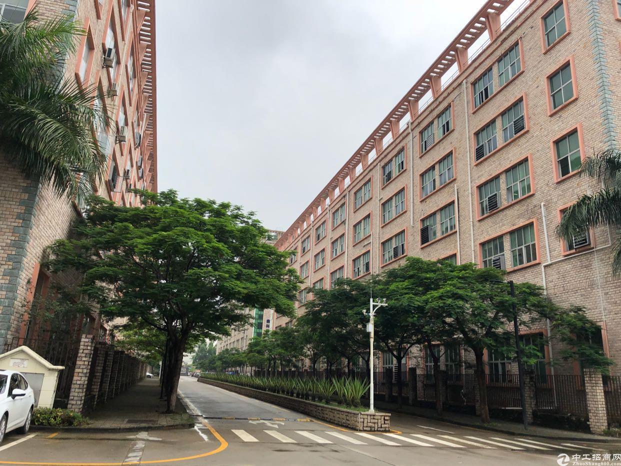 坪山大工业区新出楼上6500平米,层高5.2米
