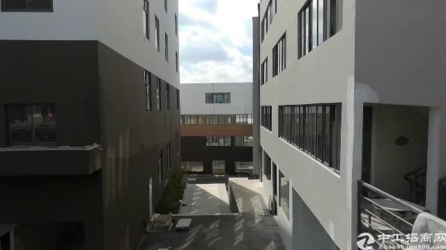 光明新区高级写字楼3200平厂房价出租